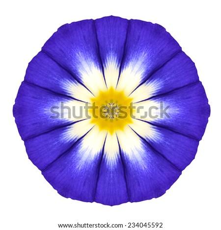 Blue Mandala Flower Ornament. Kaleidoscope Round Design Pattern Isolated on White Background - stock photo