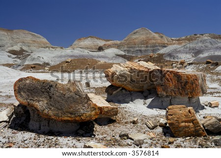 Blue Mesa in the Petrified Forest - stock photo