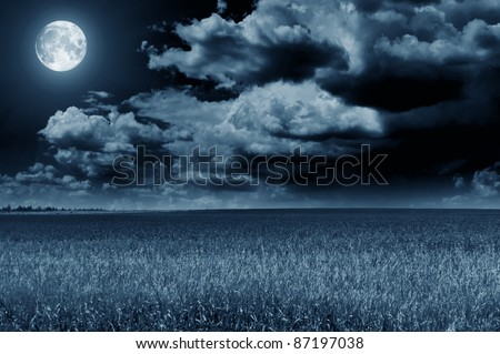 Blue night with moon - stock photo