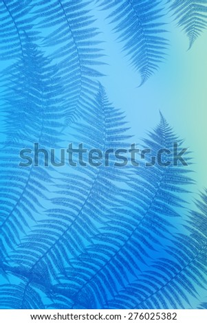 blue palm leaves - stock photo