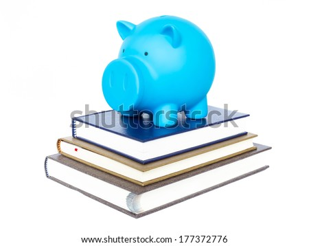 Blue piggy bank on book on  white background - stock photo