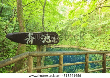 Blue pond, Aoike, Shirakami-Sanchi, world Heritage, Aomori, Japan - stock photo