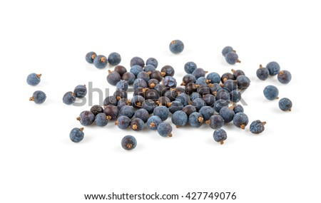 blue ripe berries of juniper on white background - stock photo