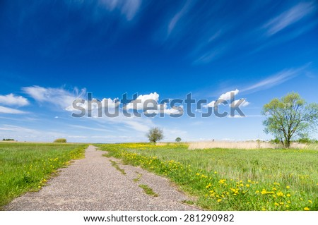 Blue sky and cloud over natural flowering field and vanishing footpath - stock photo