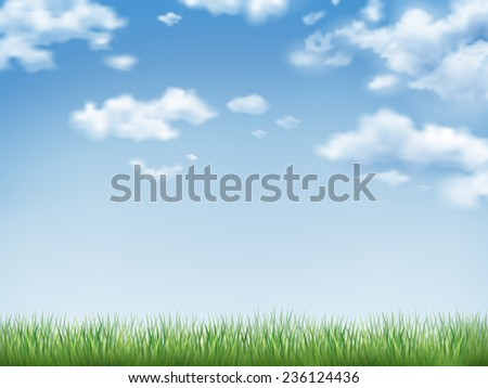 blue sky and field of green grass background  - stock photo