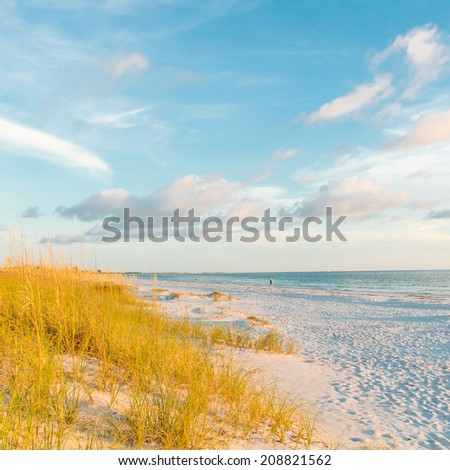 Blue sky and ocean beach with sand dunes with grass - stock photo