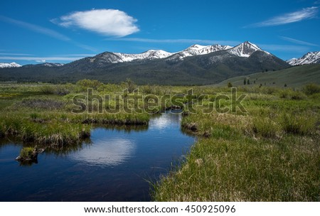 Blue sky and white clouds reflected in a wetland surrounded by lush green foliage with snow capped mountains in the background.
