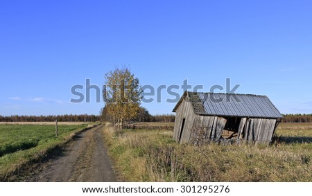 Blue sky in the autumn. Lonely barn on a meadow, gravel road to the left. Trees in the background. - stock photo