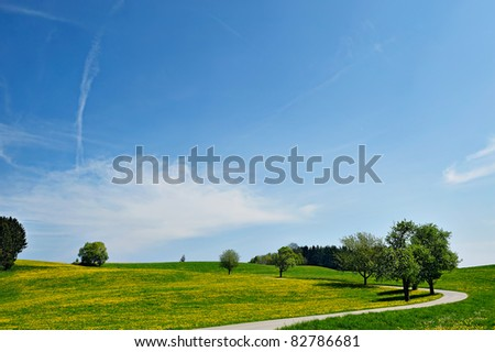 Blue sky over farmland landscape. Panoramic picture with green fields and a rural country road. - stock photo