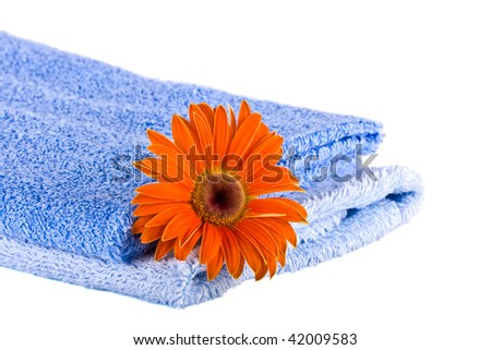 Blue soft fluffy towels, Flower on a white background - stock photo