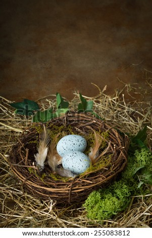 Blue speckled eggs lying in a bird's nest - stock photo