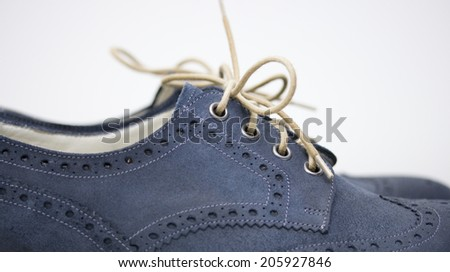 Blue Suede English Brogue Country Shoes - stock photo