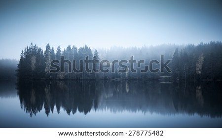 Blue toned photo. Autumnal landscape with threes on a coast, fog and still lake - stock photo