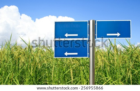 Blue traffic sign with green paddy rice and blue sky background - stock photo