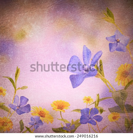 Blue & yellow flowers background - stock photo