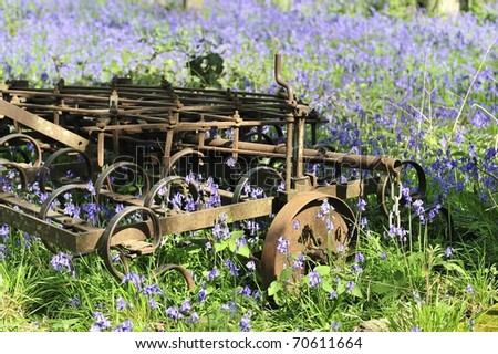 Bluebells growing around Old Farm Machinery in Oxfordshire. - stock photo