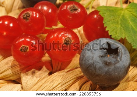 Blueberries and redcurrants closeup - stock photo
