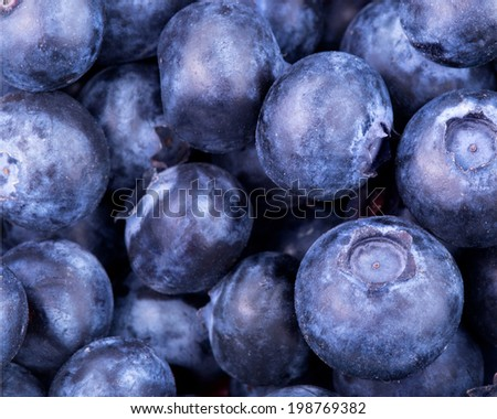 blueberries background  - stock photo