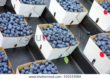 Blueberries baskets at a local farmers market in Canada. - stock photo