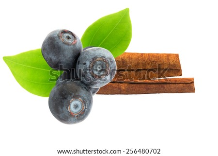 blueberries cinnamon stick  isolated on white background selective soft focus - stock photo