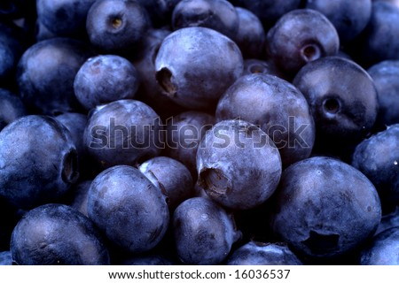 blueberries close-up - stock photo