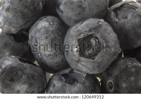 Blueberries/ closeup of ripe plump gourmet organic blueberries in a small glass bowl