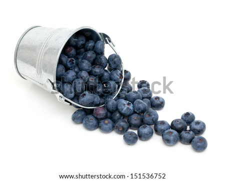 blueberries in a bucket isolated on whiteb