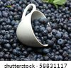 blueberries in a cup - stock photo