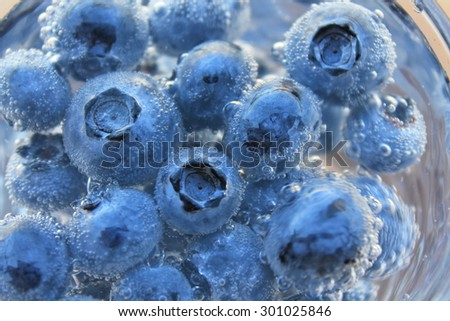 Blueberries in the mineral water with lots of small bubbles.