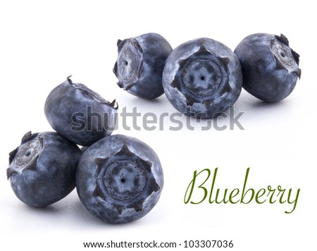 Blueberries isolated on white background  (with sample text) - stock photo