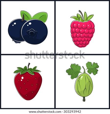 Blueberries, Raspberries, Strawberry,Gooseberry , Isolated on White Background ,Set of Fruit Icons - stock photo