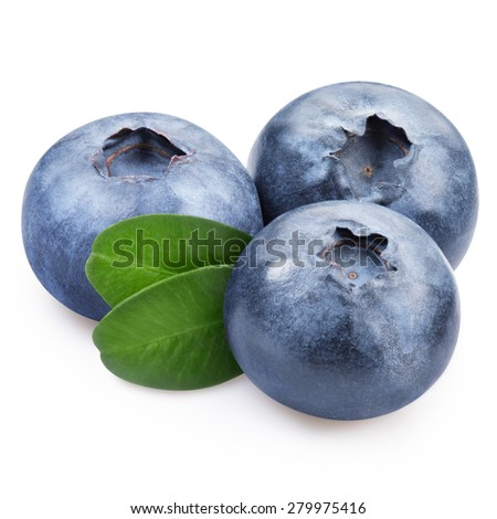 Blueberries with leaves on a white background - stock photo