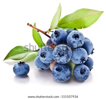 Blueberries with leaves on a white background. Studio isolated. - stock photo