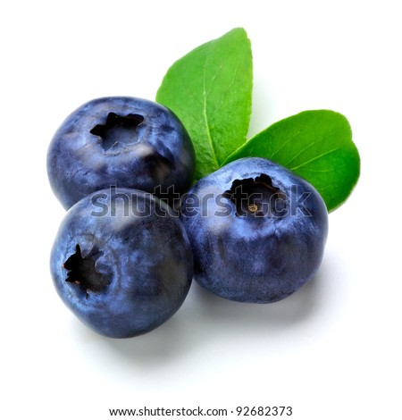 blueberry - stock photo