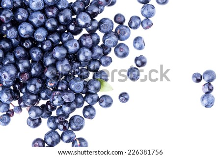blueberry berry solated on white background