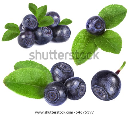blueberry collection set closeup macro isolated on a white background - stock photo
