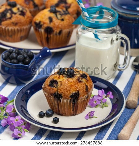 blueberry muffins with fresh blueberries. Selective focus. - stock photo