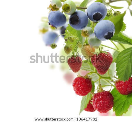 Blueberry,Raspberry And Strawberry With Leaves On White Background - stock photo