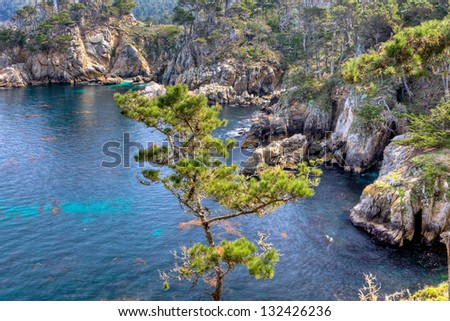Bluefish Cove, Point Lobos State Reserve, California - stock photo