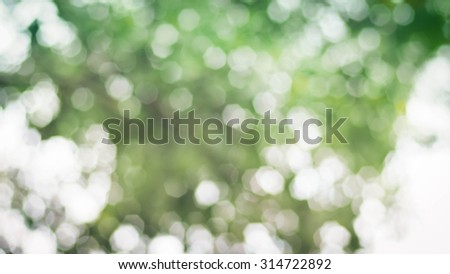 Blur bokeh abstract nature background