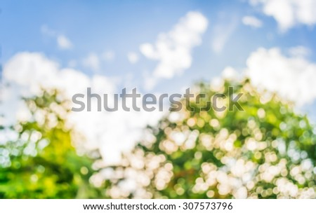 blur image of Abstract Bokeh of tree green color background . - stock photo