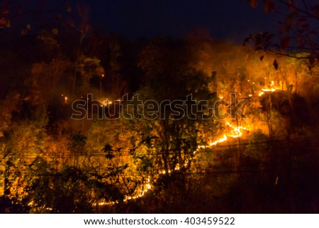 Blur image of wildfire use for background.