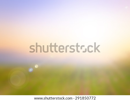 Blur Nature. Bokeh, View, Soft, Grass, Art, Farm, Land, Light, Fresh, Lawn, Flora, Color, Bright, Design, Peace, Sunny, Season, White, Foliage, Earth, Heaven, Branch, Pink, Yellow, Orange, Travel - stock photo