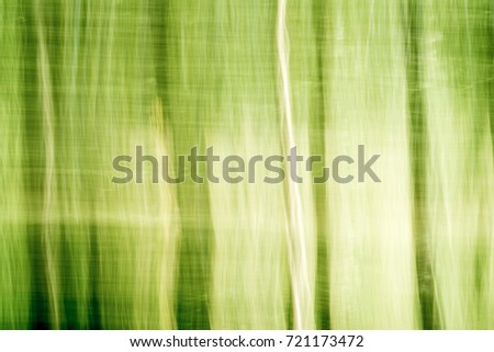 Blur nature green park with bokeh sun light abstract background. Copy space of travel adventure and environment concept.