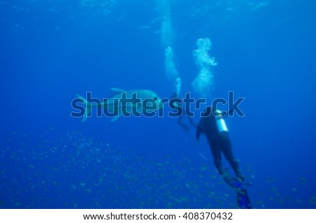 blur underwater marine life, diver and reef background