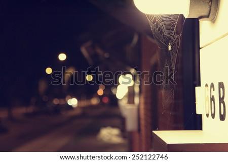 Blured city lights at night and spiderweb - stock photo