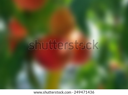 blurred abstract background with peaches for your design - stock photo