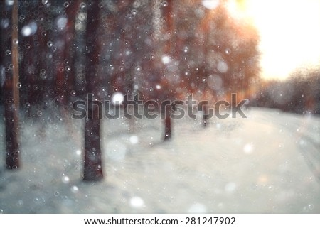 blurred background forest snow winter - stock photo