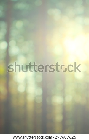 blurred background of a summer forest at sunset, retro style - stock photo