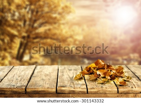 blurred background of golden autumn landscape and old leaves of brown color and wooden table  - stock photo